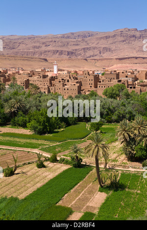 Village of Tinerhir Dades Valley High Atlas Mountains Morocco - Stock Image