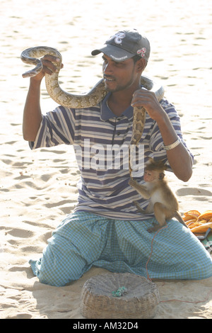 Snake charmer with cobra on Negumbo Beach Sri Lanka - Stock Image