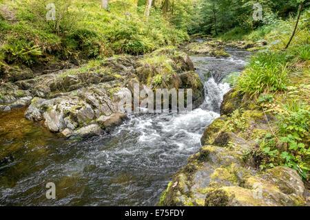 Watersmeet river gorge in North Devon UK - Stock Image