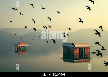 Jal Mahal, Jaipur, India - Stock Image