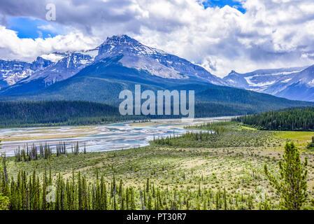 Saskatchewan Crossing River, Banff National Park, Alberta, Canada - Stock Image