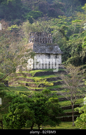 Temple of the Sun, Palenque Archeological Site, Chiapas State, Mexico - Stock Image