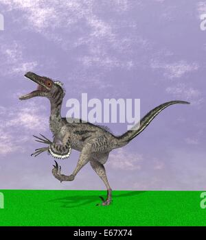dinosaur Velociraptor mongoliensis - Stock Image
