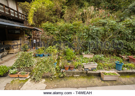 Small kitchen garden next to house, Fushimi Ward, Kyoto, Honshu, Japan - Stock Image