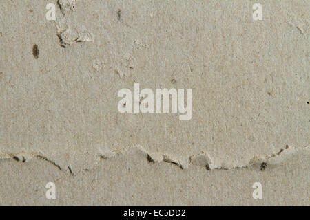cardboard with crease - Stock Image