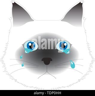 Crying Birman cat, computer graphics, cg, vector, vectors - Stock Image