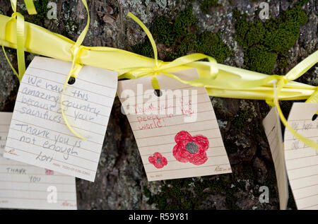 Heartfelt handwritten messages for veterans, tied to yellow ribbons on trees.  Part of Remembrance Day observance in Coquitlam, BC, Canada - Stock Image