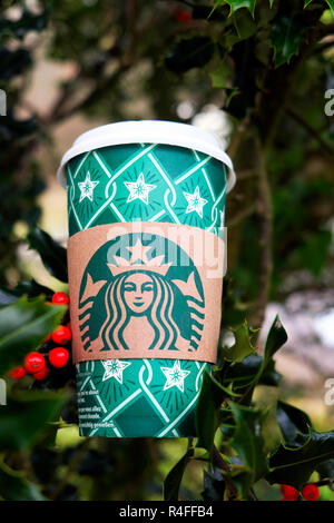 Christmas Starbucks festive paper coffee cup and red holly berries in holly tree Great Britain, UK - Stock Image