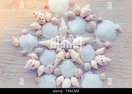 Beautiful shell mandala pattern made of real seashells. Traveling exotic places background concept. - Stock Image
