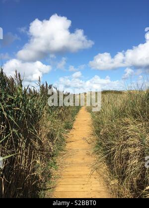 A duckboard path to the beach under a summer sky. - Stock Image