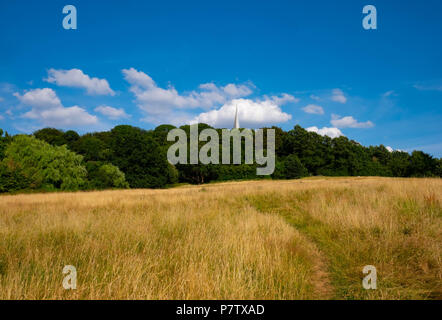 London, England. 7th July 2018. The heatwave has made the grass on Harrow-on-the-Hill tinder dry. The present heatwave is set to continue. ©Tim Ring/Alamy Live News - Stock Image