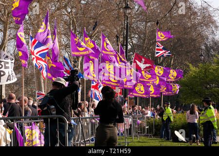 UKIP flags surronding the media paddock, on Parliament Square Garden,  during a demonstration  against the delays to Brexit  on the day the UK should have left  the EU. - Stock Image