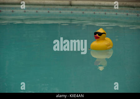 A large rubber duck wearing sunglasses sits in a swimming pool, accompanied by its reflection. - Stock Image