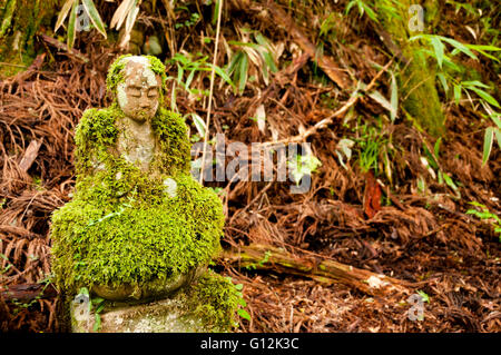 Mossy bodhisattva statue at Okunoin cemetery, Japan - Stock Image