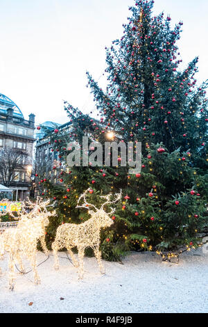 Glasgow's main Christmas Tree with reindeer in George Square in the centre of the city,  Scotland, UK. - Stock Image