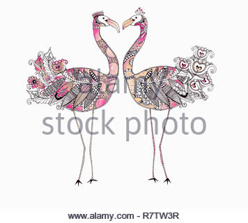 Two flamingos face to face forming heart shape with ornate patterned feathers - Stock Image