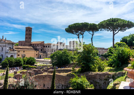 Rome, Italy - 24 June 2018:The ancient ruins of Basilica of Maxentius at Palatine Hills, Roman Forum in Rome - Stock Image