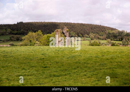 Sad remains of an old norman castle on the bank of River Suir in County Waterford,Ireland. - Stock Image