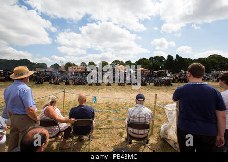 A group of steam powered traction engines at the 2018 Cheshire Steam Fair - Stock Image