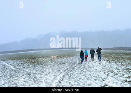Portsihead. 1st Mar, 2018. UK Weather:  The icy weather and snow arrived in Somerset during the afternoon. The Met - Stock Image