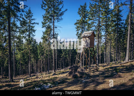 Hunting tower on Grabina Mountain Landscape Park of Gory Sowie (Owl Mountains) mountain range in Central Sudetes, Poland - Stock Image