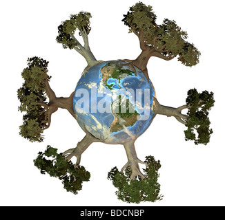 Earth with trees america - Stock Image