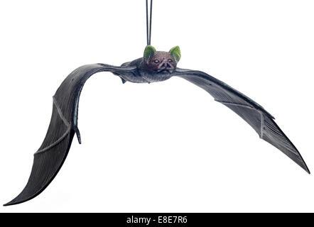 Toy bat on elastic - Stock Image