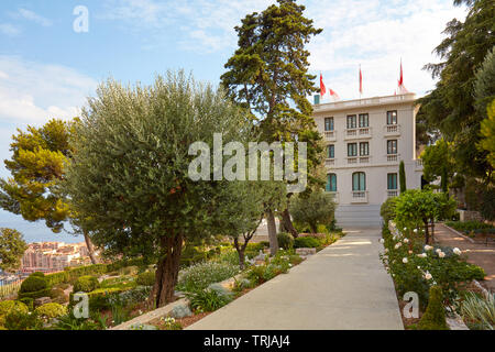 MONTE CARLO, MONACO - AUGUST 20, 2016: Villa Paloma contemporary art museum garden with olive tree and roses in a sunny summer day in Monte Carlo, Mon - Stock Image