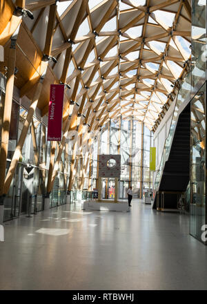 Herbert Art Gallery and Museum interior showing the geodesic timber and glass roof, Coventry UK - Stock Image