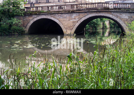 The road bridge over the River Leam with the arches reflected in the water and grasses in the foreground. - Stock Image