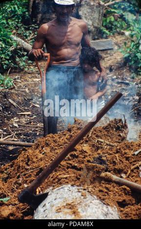 Degrading labor, family work, sawdust burning at sawmill Rio Branco, Acre State - Amazon deforestation, Brazil. - Stock Image