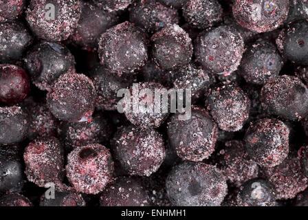 Frozen blueberries, - Stock Image