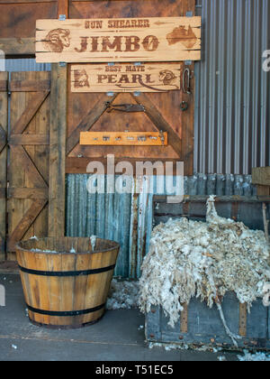 Inside A Sheed Shearing Shed For A Sheep Shearing Show - Stock Image