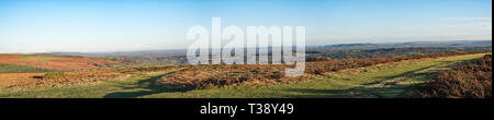 A panorama of Hergest Ridge, Kington, Herefordshire, UK.Part of the Offa's Dyke Path, a long distance footpath on the border between England and Wales - Stock Image