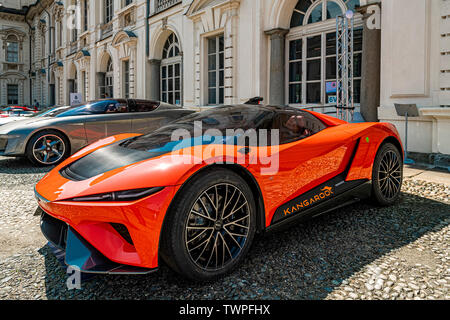 Turin, Piedmont, Italy. 22nd June 2019. Italy Piedmont Turin Valentino - valentino castle - park Auto Show 2019 - Credit: Realy Easy Star/Alamy Live News Credit: Realy Easy Star/Alamy Live News - Stock Image