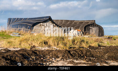 Upturned wooden boat hulls on the shore of Lindisfarne Island used as fishermens' huts. - Stock Image
