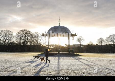 Duthie Park, Aberdeen, Scotland, uk: 30 January 2019: uk weather - a dog walker enjoying a beautiful crisp bright morning in Aberdeen's Duthie Park on the banks of the River Dee Credit: Kay Roxby/Alamy Live News - Stock Image