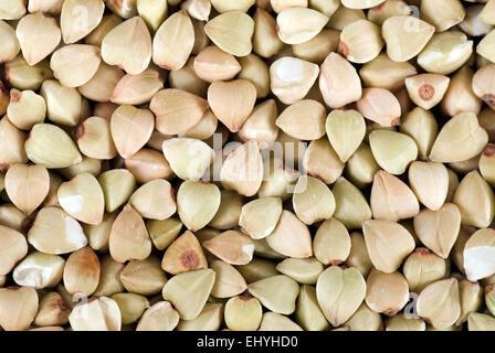 Buckwheat background close up full frame. - Stock Image