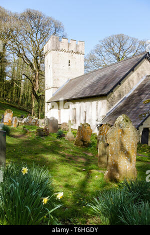 Small 14th century Norman church of St Illtyd with battlemented tower in spring on Gower Peninsula, Oxwich, West Glamorgan, South Wales, UK, Britain - Stock Image