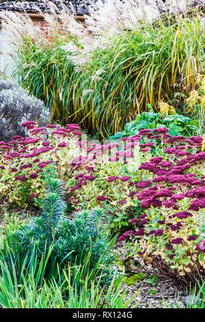 Part of an autumn herbaceous perennial border in a gravel garden. - Stock Image