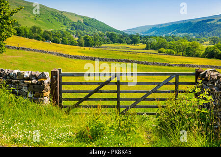 UK, Yorkshire, Wharfedale, Hubberholme, Upper Wharfedale agriculural land from Haw Ings - Stock Image