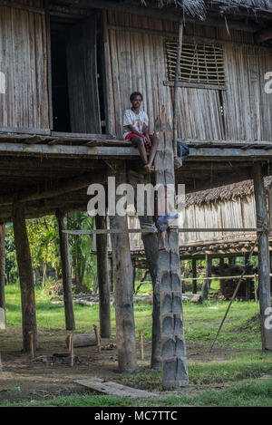 A small boy climbing a traditional hand carved ladder to his stilt house, Swagup Village, Upper Sepik, Papua New Guinea - Stock Image