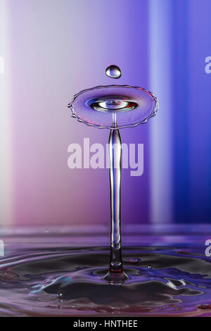 Liquid Art, the study of a liquid drop creating shapes from fluid dynamics - Stock Image