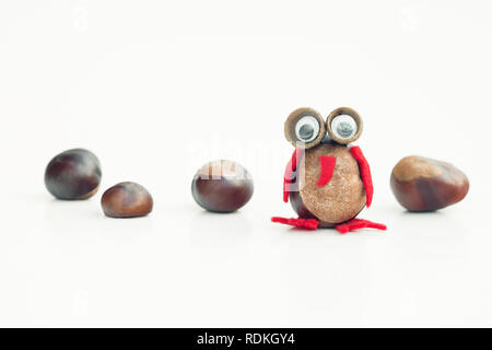 Funny owl shape character or figurine made with chestnuts in white isolated background. - Stock Image