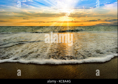 Sunset ocean birds is an ocean scencic sunset with a bathing solul light of rays coming down from the heavens like - Stock Image