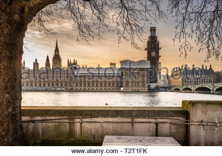 The Palace of Westminster (UK Parliament) in golden light before sunset on a beautiful warm day in February 2019 - Stock Image