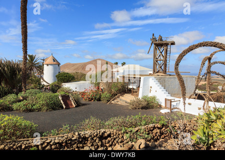 Animal mill and windmill in Museo Agricola El Patio agricultural museum on a 19th century farm. Tiagua Lanzarote Canary Islands - Stock Image
