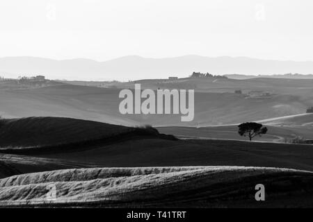 Beautiful view of Tuscany hills at sunset with mist. - Stock Image