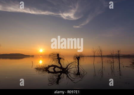 Beautiful sunset at Trasimeno lake (Umbria), with perfectly still water, skeletal trees and beautiful warm colors. - Stock Image