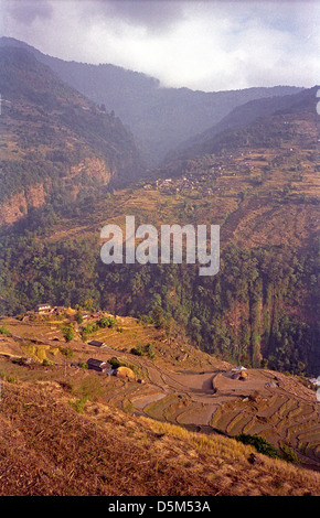 Farms and village settlements with terraced farms in Modi Khola valley near Chomrong Annapurna circuit Nepal Himalayas - Stock Image